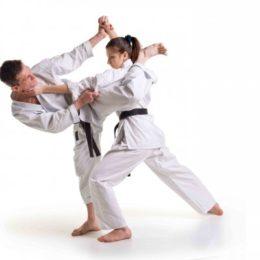 Секреты боевых искусств — Эксперименты