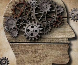 Удивительные тайны мозга