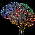 Мозг Человека 2 серия