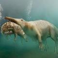 Пути эволюции — Сухопутные киты