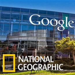Взгляд изнутри: Google