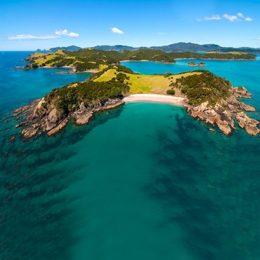 Дикая природа Новой Зеландии