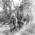 Индокитай. Народная война в цвете. Часть 2