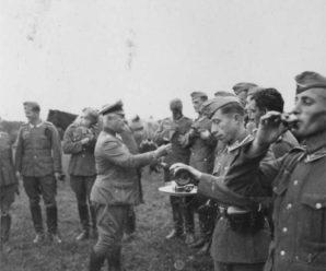 Враги-союзники: Последние шаги Гитлера