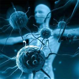 Научные сенсации: Бактерии правят миром. Фильм 2