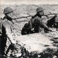 Апокалипсис: Первая мировая война
