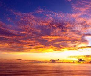Загадки Океанов — невероятные чудеса природы