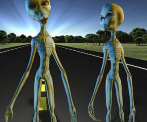 Как выглядят инопланетяне — Сквозь кротовую нору с Морганом Фрименом