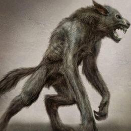 Мифические существа — Проклятие Оборотня